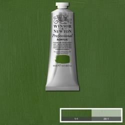 Prof. Acr.  60ml Chromium Oxide Green