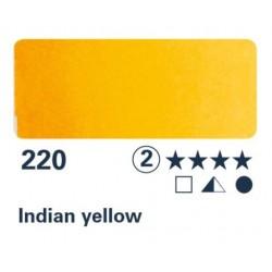 1/2 NAP jaune indien S2